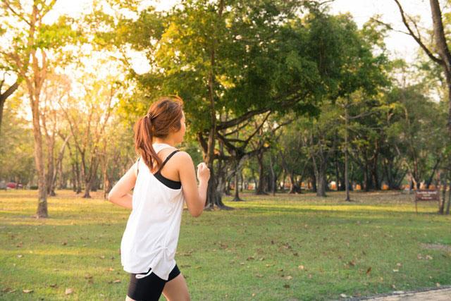 Halbmarathon Trainingsplan Teaser